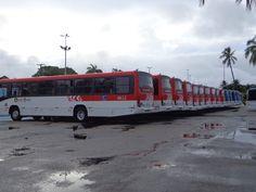 SÉRGIO JOSÉ- ÔNIBUS ALAGOAS: 50 Ônibus Novos São Entregues em Maceió.