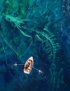 Stefan Koidl Boat Boats Skeleton Skeletons Dragon Dragons Sea Undersea Underwater Water Ocean Art Fantasy Art Photoset   moebiusloop.tumblr.com