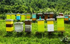 How to Build a Better Beehive via @modfarm