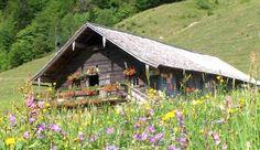Mayerlehenhütte, Gruberalm, Hintersee.