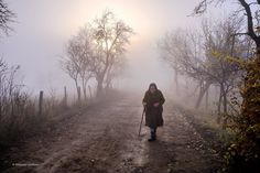 Kalmar Zoltan added a new photo to the album: Country Life — at Tara Lapusului, Maramures. Old Couples, Couples In Love, Old Couple In Love, Winding Road, National Geographic Photos, Your Shot, Timeline Photos, Best Memories, Figurative Art