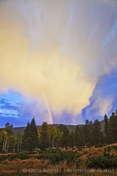 Fall thunderstorm in the Jemez Mountains of northern New Mexico.  http://www.alpenglowimagesphotography.com