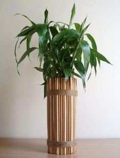 Chopstick vast/planter - wrap chopsticks around a water bottle and secure with twine.