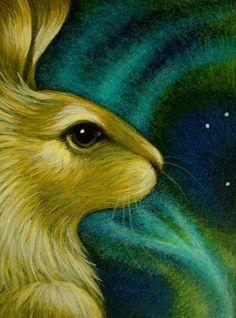 bunny rabbit watching the northern lights Hare Illustration, Illustrations, Rabbit Watch, White Rabbits, Bunny Rabbits, Rabbit Art, Bunny Art, Animal Totems, Art Portfolio
