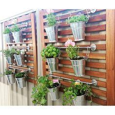 Vertical Herb Gardens, Vertical Garden Wall, Outdoor Gardens, Hanging Herb Gardens, Outdoor Balcony, Vertical Bar, Balcony Ideas, Culture D'herbes, Herb Wall