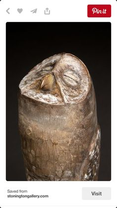 Owl carved staff