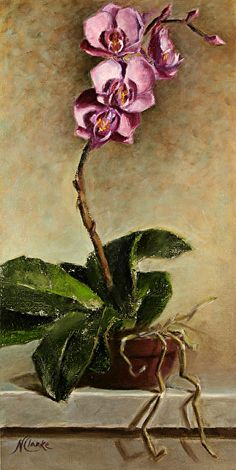 Still life with Orchid Flower by Natalia Ivan Clarke Oil ~ 16 x 8 - malen - Orchids Painting, Acrylic Painting Flowers, Painting Still Life, Still Life Art, Orchid Images, Still Life Flowers, Diy Canvas Art, Flower Art, Bouquet