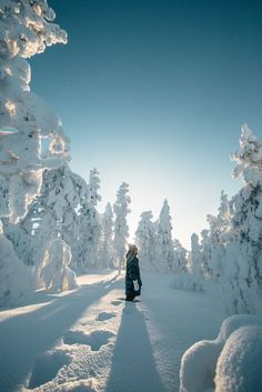 The best Hotels and Resorts are at the Hurb Travel Agency. ❤️ ✚ National Destinations ✚ International Destinations at the best prices! Go travel! Winter Fun, Winter Travel, Snow Travel, Winter Snow, Best Ski Resorts, Snow Photography, Travel Photography, Ski Holidays, Winter Pictures