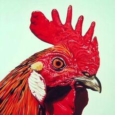 Art chicken classic red