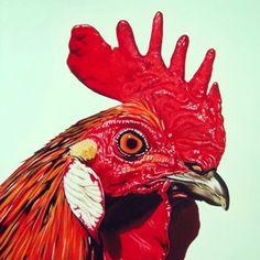 Art chicken classic red