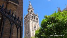 """#Sevilla capital - La Giralda GPS 37º 23' 9"""" -5º 59' 31"""" / 37.385833, -5.991944  Es el minarete de la antigua mezquita sobre la que se construyó la Catedral. En su día fue la torre más alta del mundo. Hoy, después de las tres añadiduras realizadas tras la reconquista, vemos la definitiva torre de 97,5 metros de altura, coronada por una desmesurada veleta de bronce, sobre la que se divisa una bella panorámica de la ciudad."""