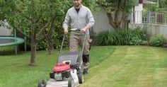 Ihr Rasen ist nur noch eine lückige Moos- und Unkrautfläche? Kein Problem: Mit diesen Tipps erneuern Sie den Rasen problemlos an einem Wochenende – ganz ohne Umgraben!