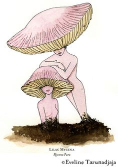 ☽ Glitter Tomb ☾ — Mushroom Pieces by Eveline Tarunadjaja, one of my. Art Sketches, Art Drawings, Arte Peculiar, Illustration Art, Illustrations, Mushroom Art, Mushroom Drawing, Drawn Art, Arte Sketchbook