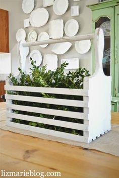 Boxwood & A Wood Box