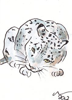 ACEO Snow Leopard Gaze Original Watercolour and Ink Painting