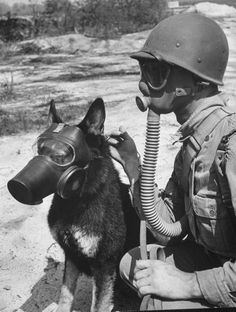 *Andreas Feininger Soldier and German Shepard Wearing Gas Masks for Chemical Warfare Maneuvers Gas Mask Art, Masks Art, Gas Masks, Military Working Dogs, Military Dogs, War Dogs, Ww2 Photos, War Photography, Best Friend Pictures