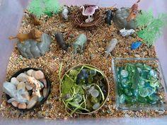 Zoo themed sensory bin