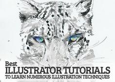 25+ Best Illustrator Tutorials to learn Numerous Illustration Techniques