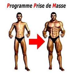 programme prise de masse et exercices de musculation