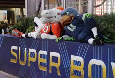 Blitz the Seahawk and Miles the Bronco at Super Bowl 48| New York gets ready for the Super Bowl -NY Daily News