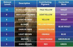 aveda hair color chart hair color wheel 8 best ash level 3 10 images hair colors ash ash brown