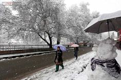 A #Kashmiri woman walks with umbrella on a snow-covered road in #Srinagar.