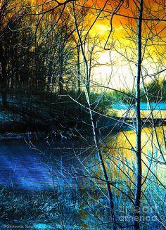 ✯ Sunlit River
