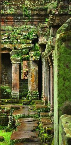 ⍋Green Gardens⍋ zen, formal, topiary & landscape parks & gardens - mossy garden ruins