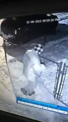 Video of people stealing the husky in Kokomo IN    196,226 Views Micah Bennett Anyone have any info on these idiots that just stole my dog ??!!! Courtland and virginia they headed west on Virginia