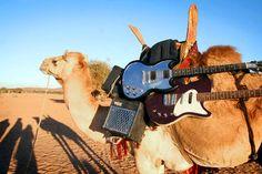 LA MEJOR CANCIÓN ANDALUZA DE 2012, de Tono Cano.  Historia del origen de La Nueva Reconquista de Graná, de Grupo de Expertos Solynieve, elegida mejor canción del año por El Secreto del Olivo.  #rock #indie