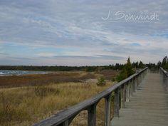 J. Schwindt Photography, board walk by Providence Bay