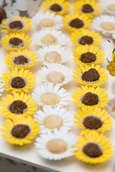 Candy cups Daisy (white)/Sunflower (yellow) (set of from Festiva Party Design Daisy Cupcakes, Bumble Bee Cupcakes, Mini Cupcakes, Sunflower Cupcakes, Sunflower Birthday Parties, Sunflower Party, Sunflower Baby Showers, White Sunflower, Candy