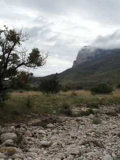 One Day in Guadalupe Mountains National Park - Road Trip the World