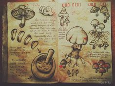 Journal 3 Gravity Falls Alex Hirsch I started making the pages with invisible ink! Gravity Falls Book 3, Gravity Falls Journal 1, Libro Gravity Falls, Grabity Falls, Grimoire Book, Fallen Book, Reverse Falls, Witch Aesthetic, Book Of Shadows