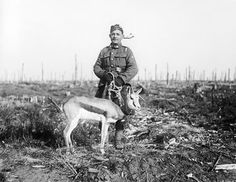 Nancy, springbok mascot of the South African Regiment, in Delville Wood, 17 February Military Working Dogs, Service Dogs, Military History, World War, Animal Rescue, Wwi, South Africa, Vintage, Highlanders