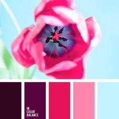 Paleta de colores №2909