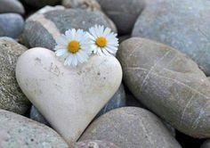 lunabulla:  Le persone sensibili sono destinate a soffrire più degli altri, ma nessuno come loro sa vivere intensamente le emozioni.Meglio avere un cuore sensibile che un cuore di pietra.