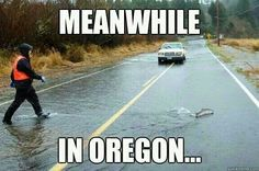 When it rains it pours.... in Oregon