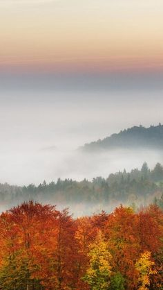 Morning Mist, Ljubljana Basin, Gorenjska, Slovenia