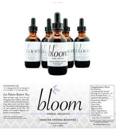 Bloom, a North Carolina based tincture manufacturer, sought out M studio to breathe new life into their branding. Avoiding the stereotypical organic product aesthetic, M studio refreshed the look and feel of Bloom's already established product in order to appeal to a wider audience. We then applied this clean, modernized brand identity to a promotional rack card and an in-store display.