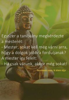 Egyszer a tanítvány megkérdezte mesterét...♡ Wisdom Quotes, Life Quotes, Positive Vibes, Einstein, Quotations, Buddha, Motivational Quotes, Thoughts, Feelings