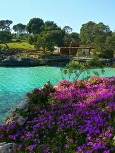Here you relax with these backyard landscaping ideas and landscape design. Menorca, Ibiza Formentera, Beautiful Islands, Beautiful Beaches, Mallorca Beaches, Places To Travel, Places To Visit, Palm Tree Island, Costa