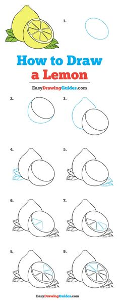 Learn How to Draw a Lemon: Easy Step-by-Step Drawing Tutorial for Kids and Beginners. #Lemon #DrawingTutorial #EasyDrawing See the full tutorial at https://easydrawingguides.com/how-to-draw-a-lemon/.