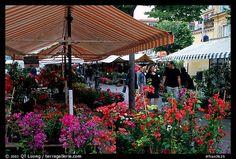 Flower Market, Nice. Maritime Alps, France (color)
