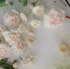 Maggie Austin Sugar Flowers   June '14