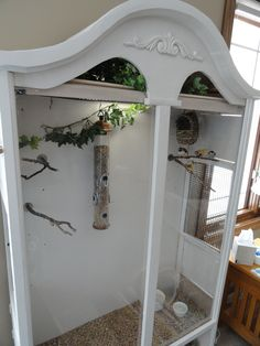 The aviary for my finches - made from a bookcase a neighbor was throwing out. Parrots, Parakeets, Cockatiel, Finches, Diy Bird Cage, Vivarium, Tortoise Habitat, Reptile Habitat, Finch Cage
