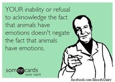 Ignorance isn't bliss for the lives of those our food choices impact so very cruelly All Lives Matter #EndSpeciesism EM-C Ⓥ