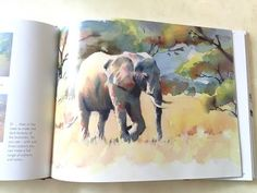DVD - Learn to Paint Vibrant Watercolours with Hazel Soan Watercolor Tips, Watercolour Tutorials, Watercolor Animals, Watercolor Paintings, Pen And Wash, Speed Paint, African Animals, Learn To Paint, Art Tutorials