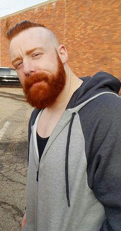 Hot Ginger Men, Ginger Beard, Wwe Sheamus, Beard Images, Red Hair Men, Redhead Men, Celtic Warriors, Wwe World, Wrestling Wwe