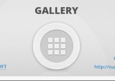 Wordpress Plugin bestwebsoft Gallery  This plugin makes it possible to implement as many galleries as you want into your website.